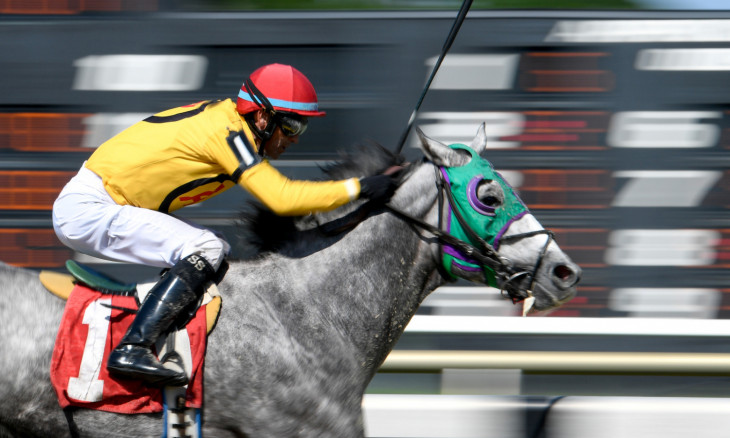Horse Racing: Tampa Bay Downs-Racing