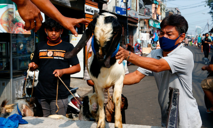 Men carry a goat from a cattle shop ahead of the Eid al-Adha festival