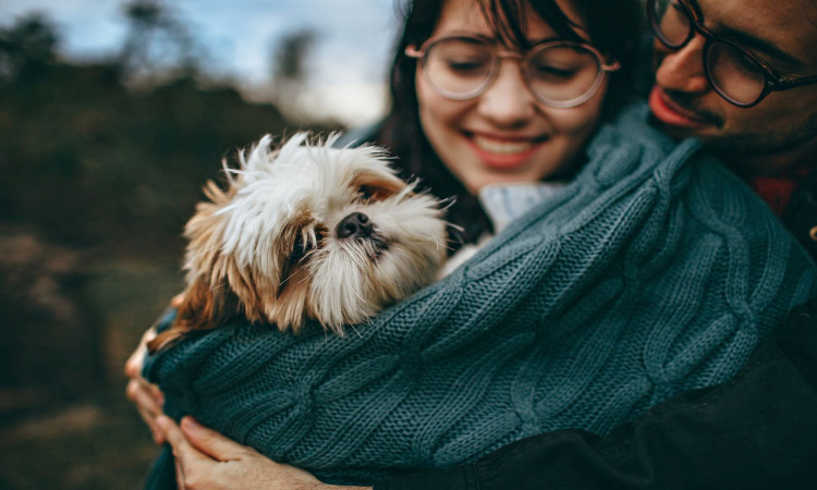 Woman and man hugging a dog.