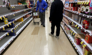 Grocery consumers