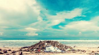 Photo of trash on shore.