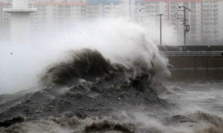 High waves caused by Typhoon Haishen