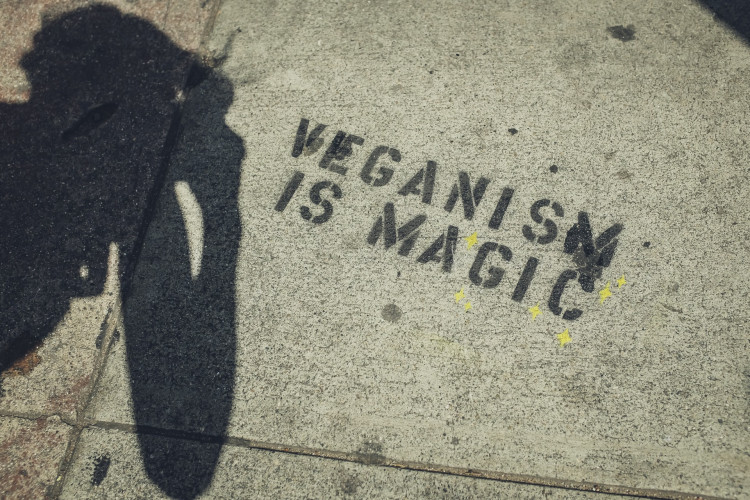 veganism is magic