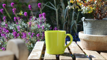 green mug, coffee
