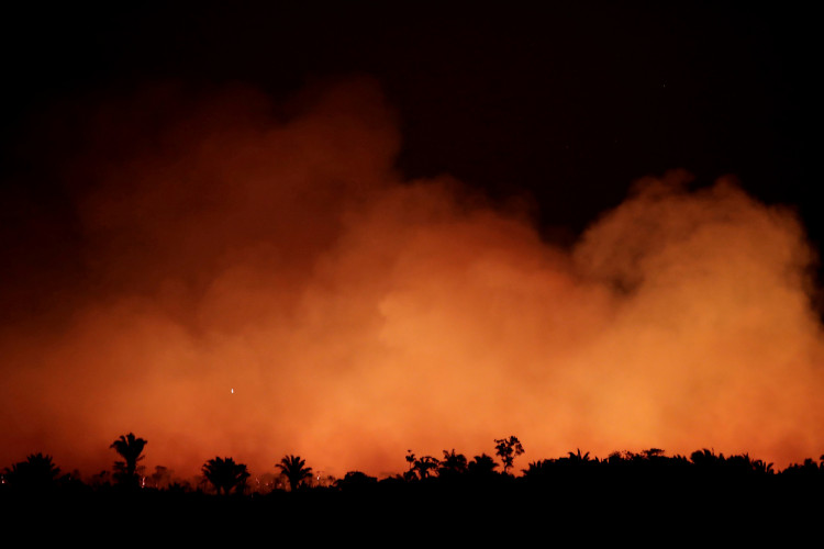 Amazon Wildfires Rage Across The Rainforest